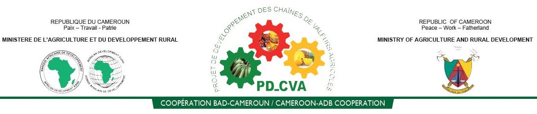 Projet de Développement des Chaînes de Valeurs Agricoles
